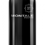 Montale Aoud Steam духи