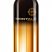 Montale Vetiver Patchouli духи